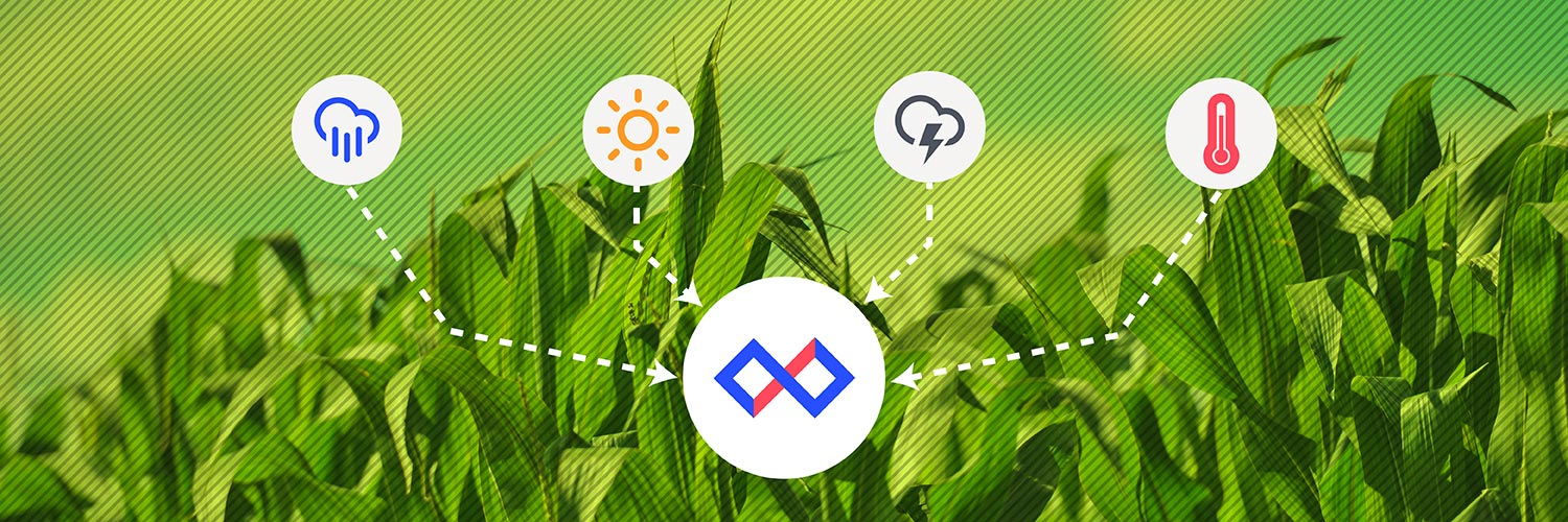 How to Grow Food with the Internet of Things