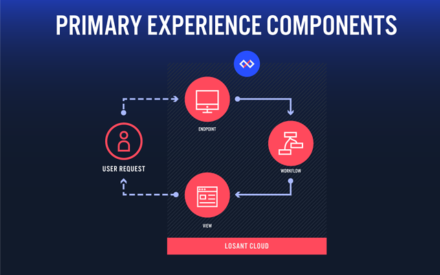 Experiences generally include endpoints, workflows, and render views.
