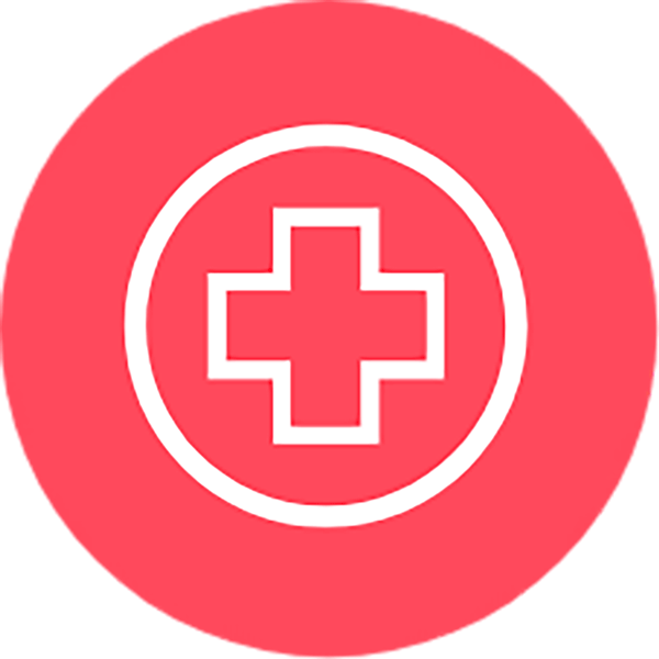 Health red icon